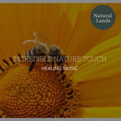 Incredible Nature Touch - Healing Music
