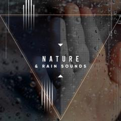 29 Nature and Rain Sounds Ambient Relaxing Sounds