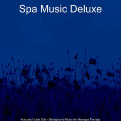 Acoustic Guitar Solo - Background Music for Massage Therapy